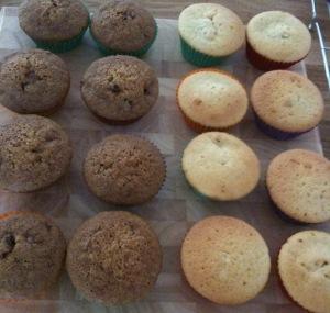 Cupcake sponges